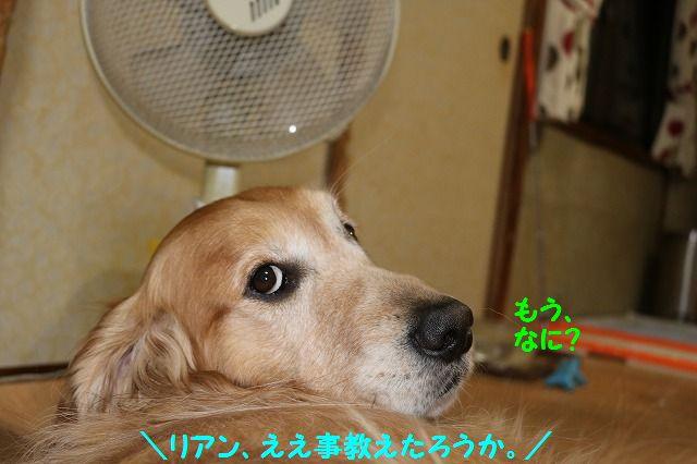 IMG_7456.jpg
