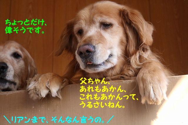 IMG_7546.jpg