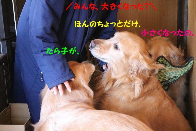 IMG_7581.jpg