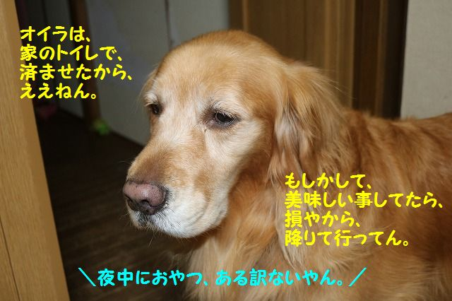 IMG_7757a.jpg