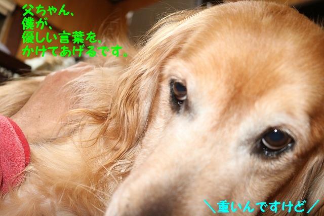 IMG_8123.jpg