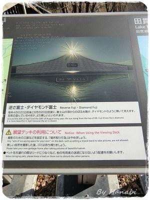 CIMG6819.jpg