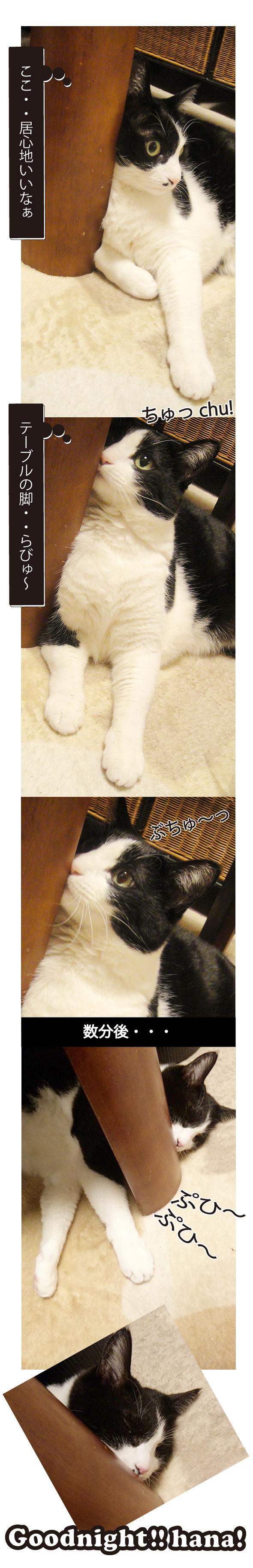 テーブルの脚が大好きな白黒猫