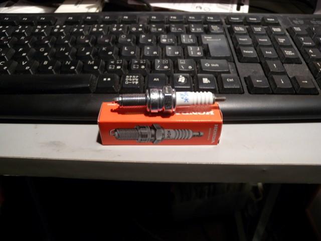 DSCN0025 (Custom)