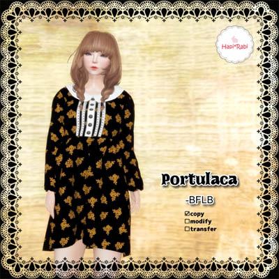 PortulacaBFLBAD.jpg