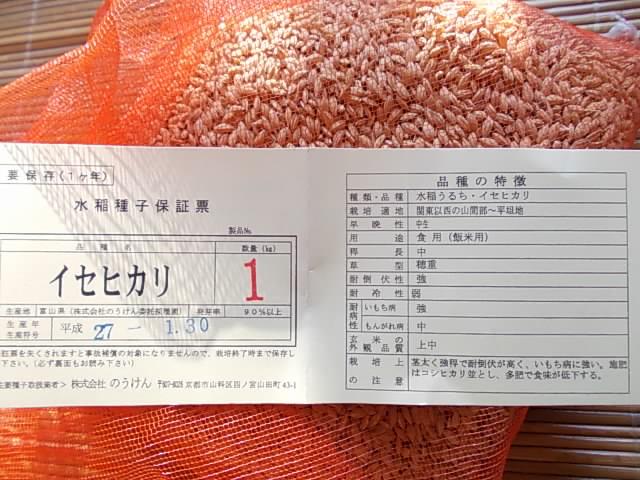 Isehikari rice 20160131