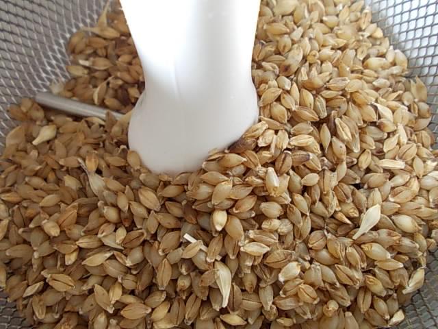 Rice polisher 20160109-2