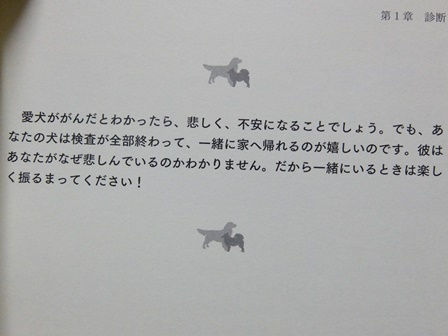 DSCF0142.jpg