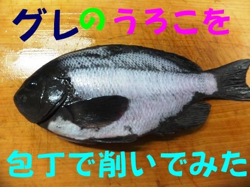 2016_0130_171445.jpg