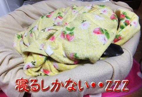 blog_0124_141510.jpg