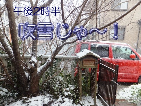 blog_0124_151300.jpg