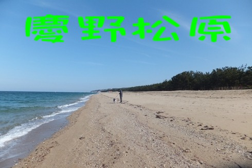 blog_0211_113244.jpg