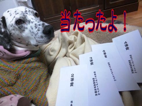 blog_1229_174046.jpg