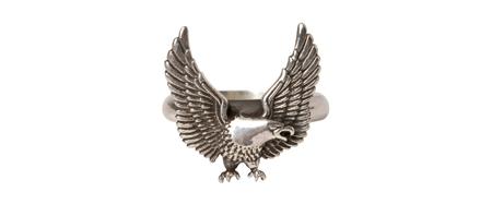 MGI-AC14 EAGLE RING(2)_R