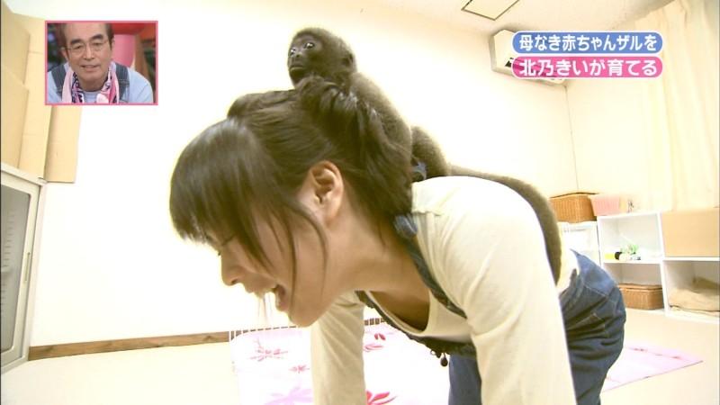 「天才!志村どうぶつ園」に胸元ユルユル服で出演して胸チラする北乃きい