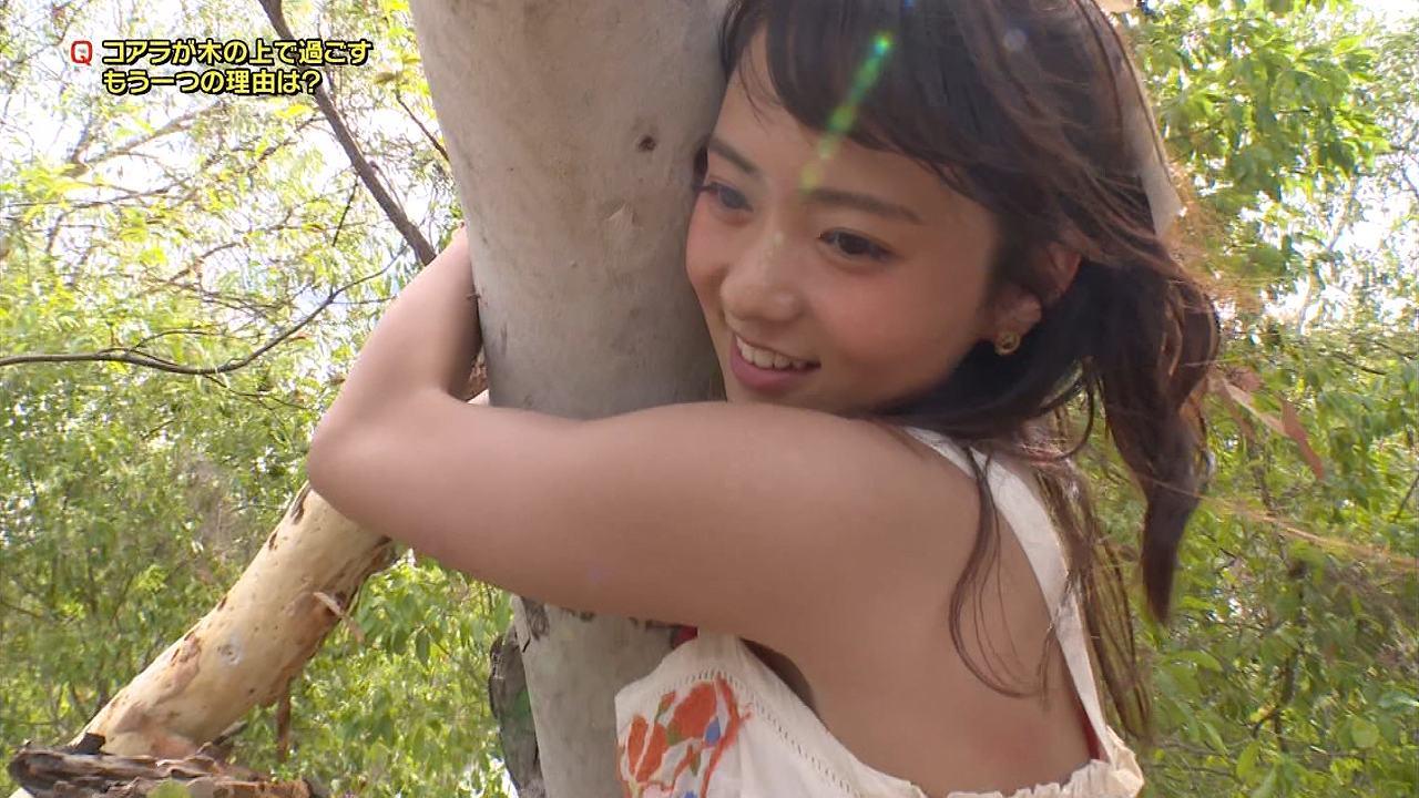 日立「世界ふしぎ発見!」で着に抱きつくミステリーハンターの鉢嶺杏奈