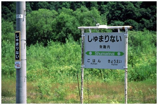 12IMG_0063-2o.jpg