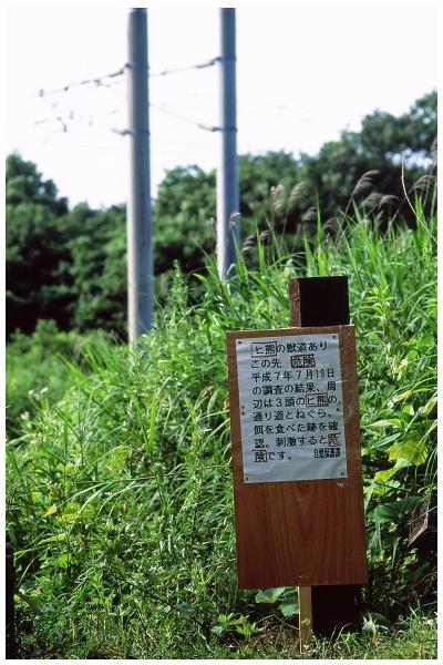 15IMG_0076-2o.jpg