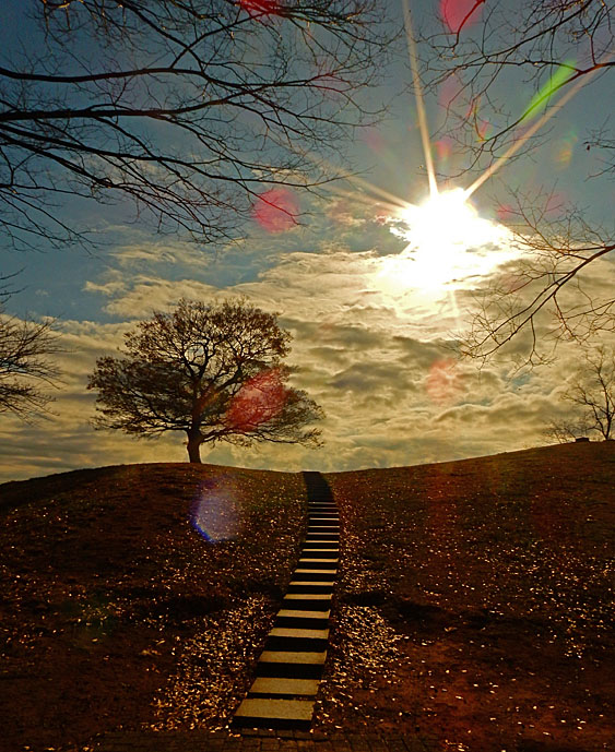 151222榎の丘 冬至