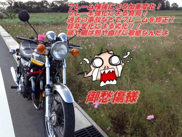 z8097.jpg