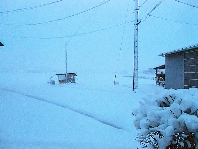 1月18日の朝景色