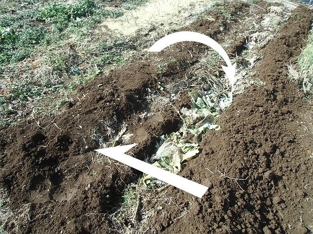 残さを埋めて盛り土をスライドさせる