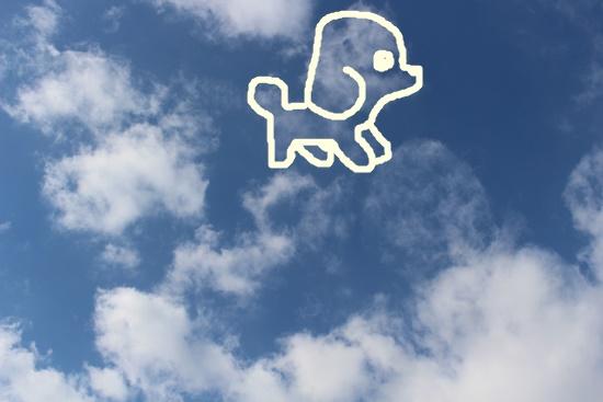 ぷーどる雲