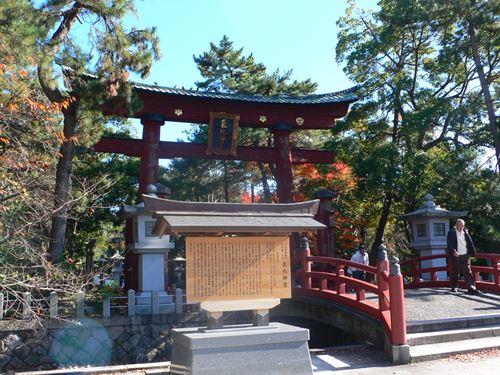 tsuruga1207007_R.jpg