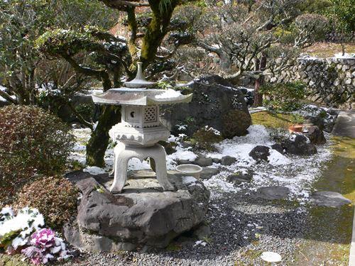 yuki280125006_R.jpg