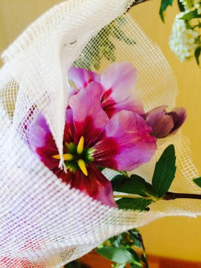 2016.2.11.お花1
