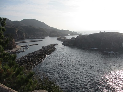 展望台から見える小さな港