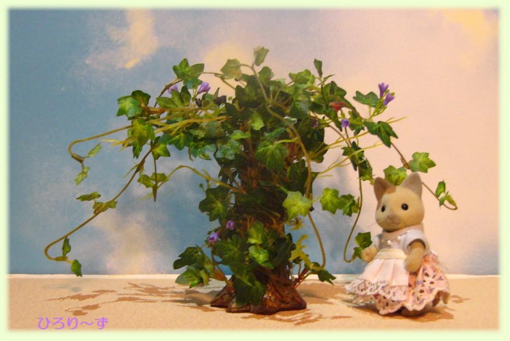 アイビーの木