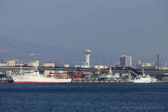 函館港から五稜郭タワーS-N