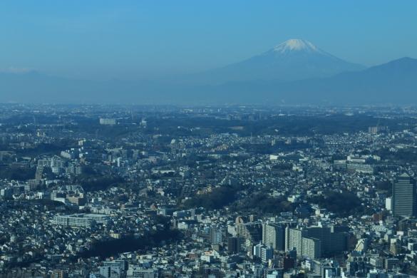 富士山ーS