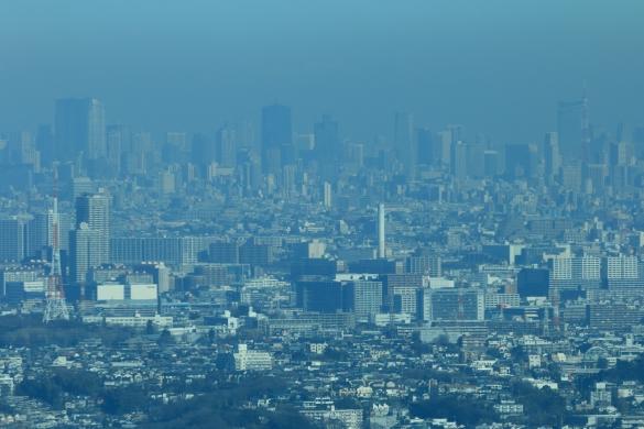 六本木ヒルズ&東京タワーS
