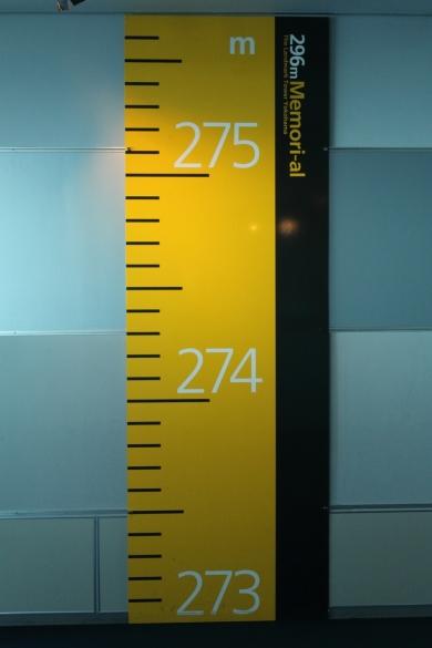 296M-S.jpg