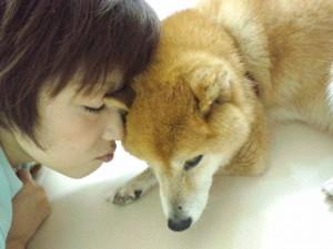 老犬本舗-ブログ-300x225