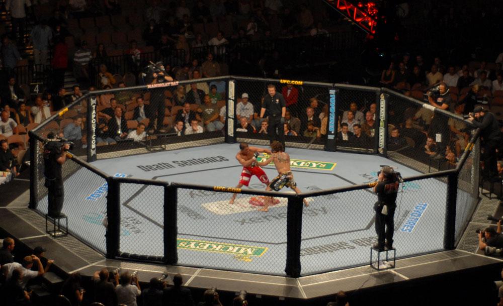 UFC_74_Respect_Bout.jpg