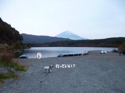 西湖2015秋