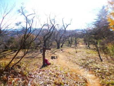 岩殿山2015冬