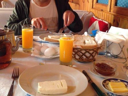 コトニの朝食