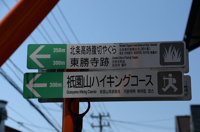 DSC_9739.jpg
