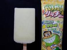 ガリガリ君リッチほとばしる青春の味レモンヨーグルト