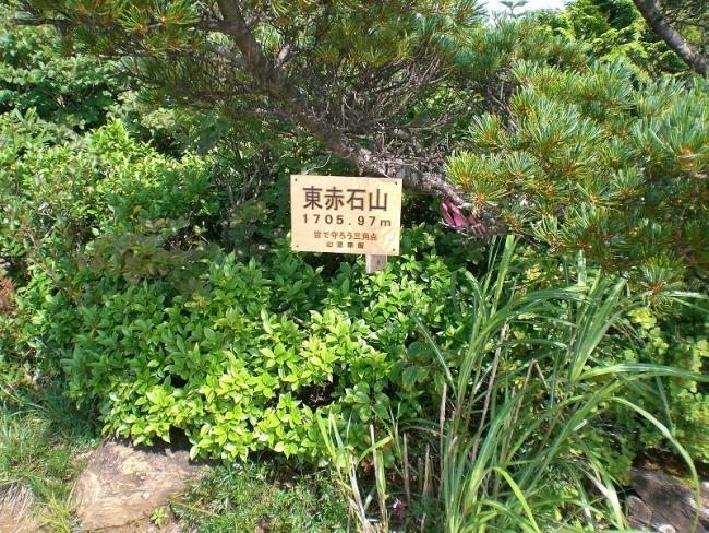 s-東赤石山ピクチャ 044_01