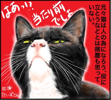 猫の所業1