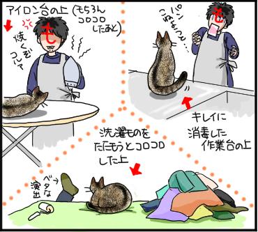 猫の所業3