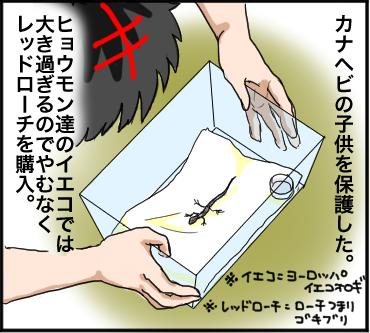 ローチ脱走1