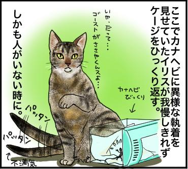 ローチ脱走3