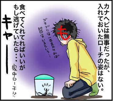 ローチ脱走4