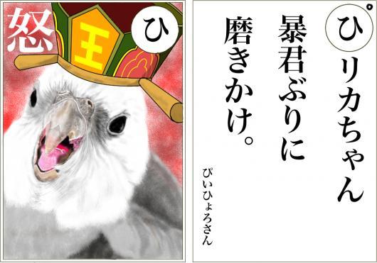 カルタひ_convert_20160116163217